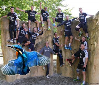 Erste Saison in der Oberliga: Das Fazit der Eisvögel